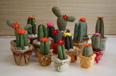 Cactus Pannolenci