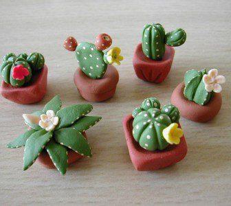 Cactus Pasta di Mais