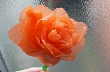 Sacchetto di plastica trasformato in fiore