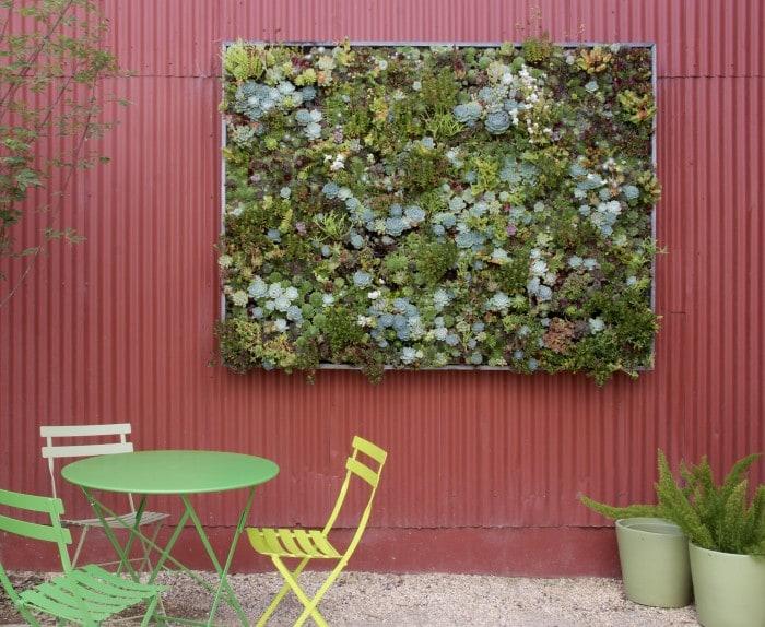 giardino verticale piante grasse - passion diy - Piante Per Giardini Verticali
