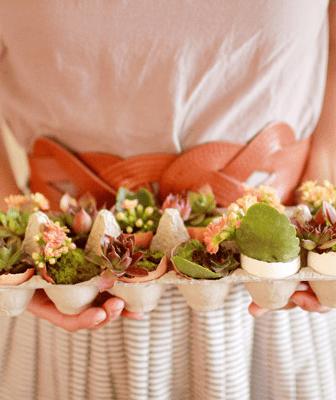 Mini Giardino con le Uova