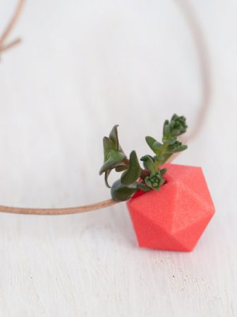 Collana Ecologica Wearable Planter