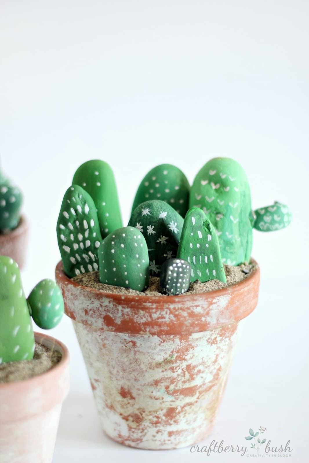 Cactus sassi dipinti passion diy for Cactus piante grasse