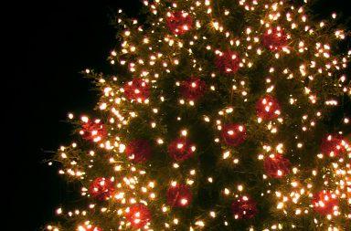 Sistemare le luci sull'albero di Natale: ecco come fare