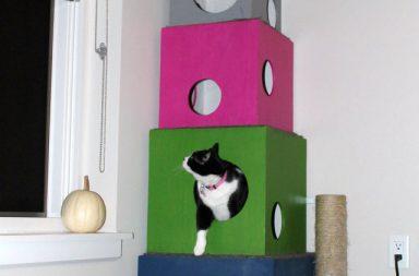 Cuccia Multipla per Gatti
