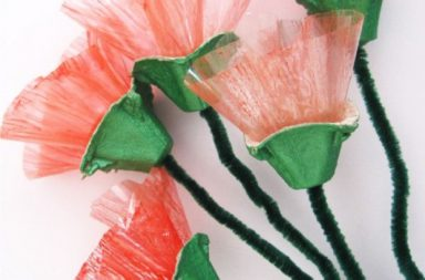 Papaveri di carta cellophane