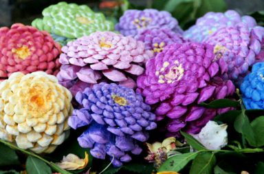 Realizzare fiori con le pigne