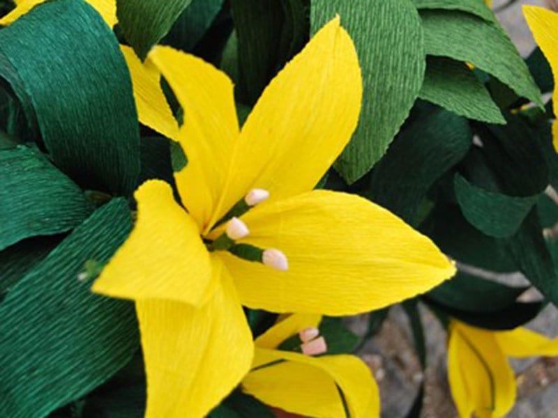 carta-fiori