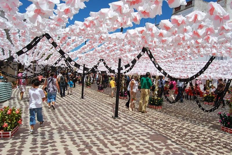 festa-dei-fiori-portogallo
