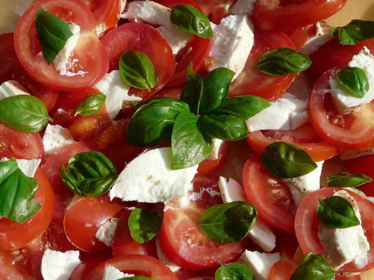 ricette-estate-insalata-pomodori-mozzarella-basilico
